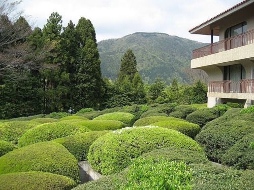 The maze at the Hakone Open-Air Museum in Japan. The trenches are deep and made of concrete whilst tops are green. Amazing shapes make this a unique maze in the world.