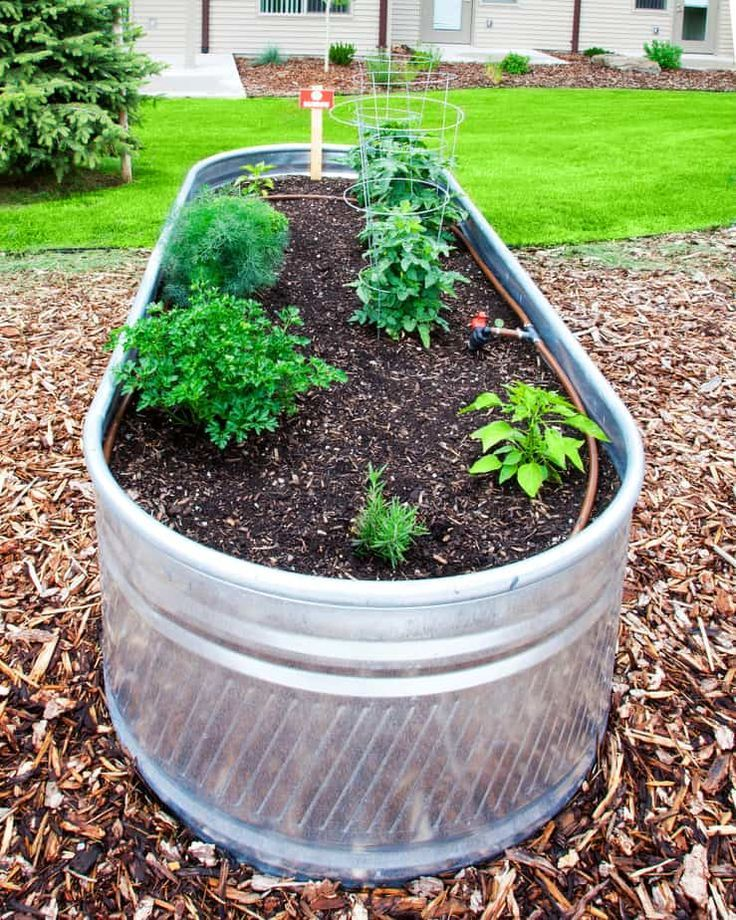 30 Amazing Ideas For Growing A Vegetable Garden In Your: Raised Garden Ideas For A Lovely Home (Over 30 Ideas