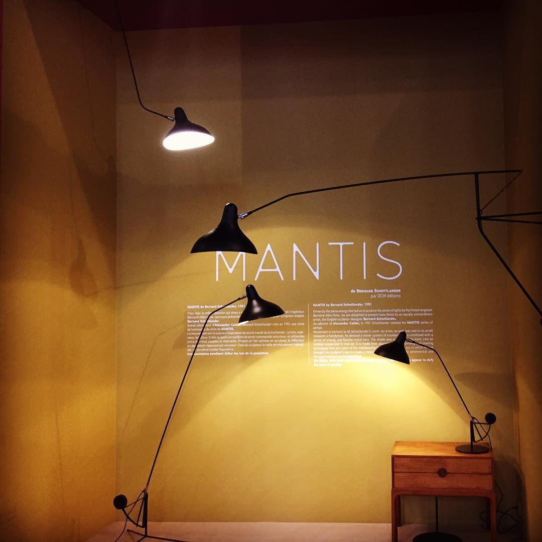 Mantis lamp by Bernard Schottlander - DCW éditions (réédition 1951) #mantislamp #bernardschottlander #dcweditions #lamp #design #maisonetobjet #mo2015 #lexploreur