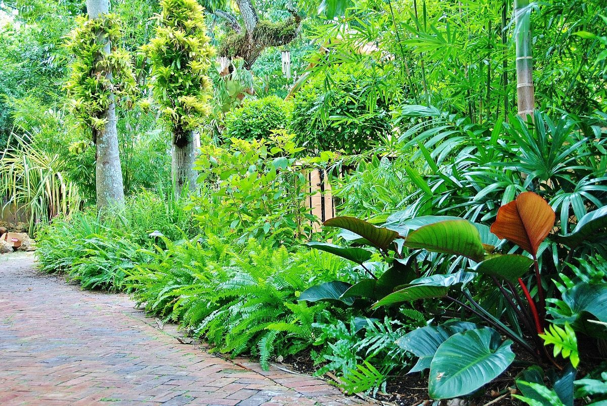 Lush Landscape And Garden Design Tropical Landscape Garden