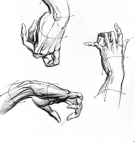 Burne Hogarth Drawing Dynamic Hands 12 Como Desenhar Maos