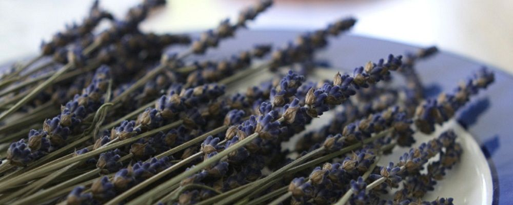 Improve Sleep Patterns with Lavender -  A Healthline.com report cites lavender essential oil for its ability to promote calmness.
