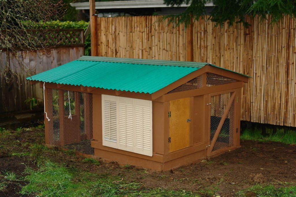 Backyard Chicken Coop Design Ideas 24