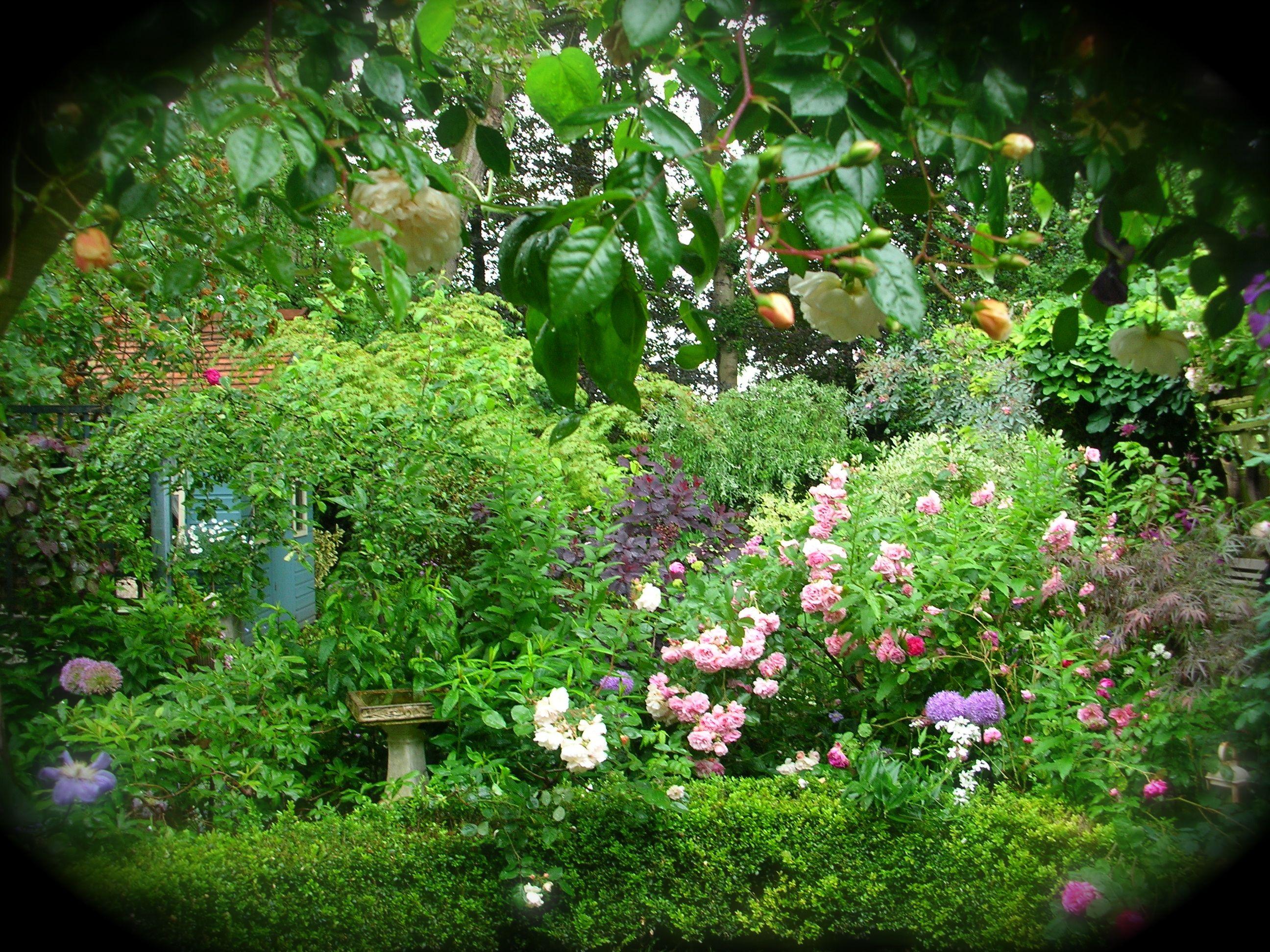 Enchanting Garden Party Decoration Ideas