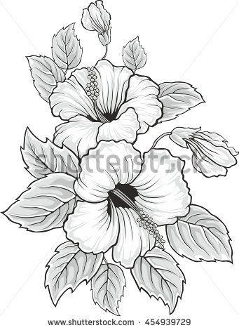 Blooming beautiful hibiscus flower. Hawaii symbol. Card or floral ...