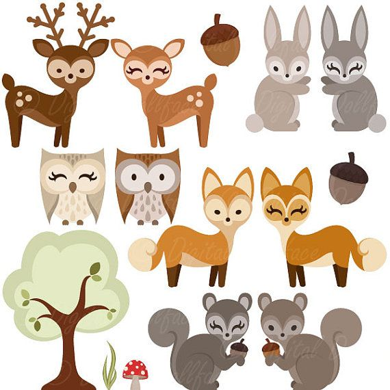 Deer woodland. Forest animal clipart owl