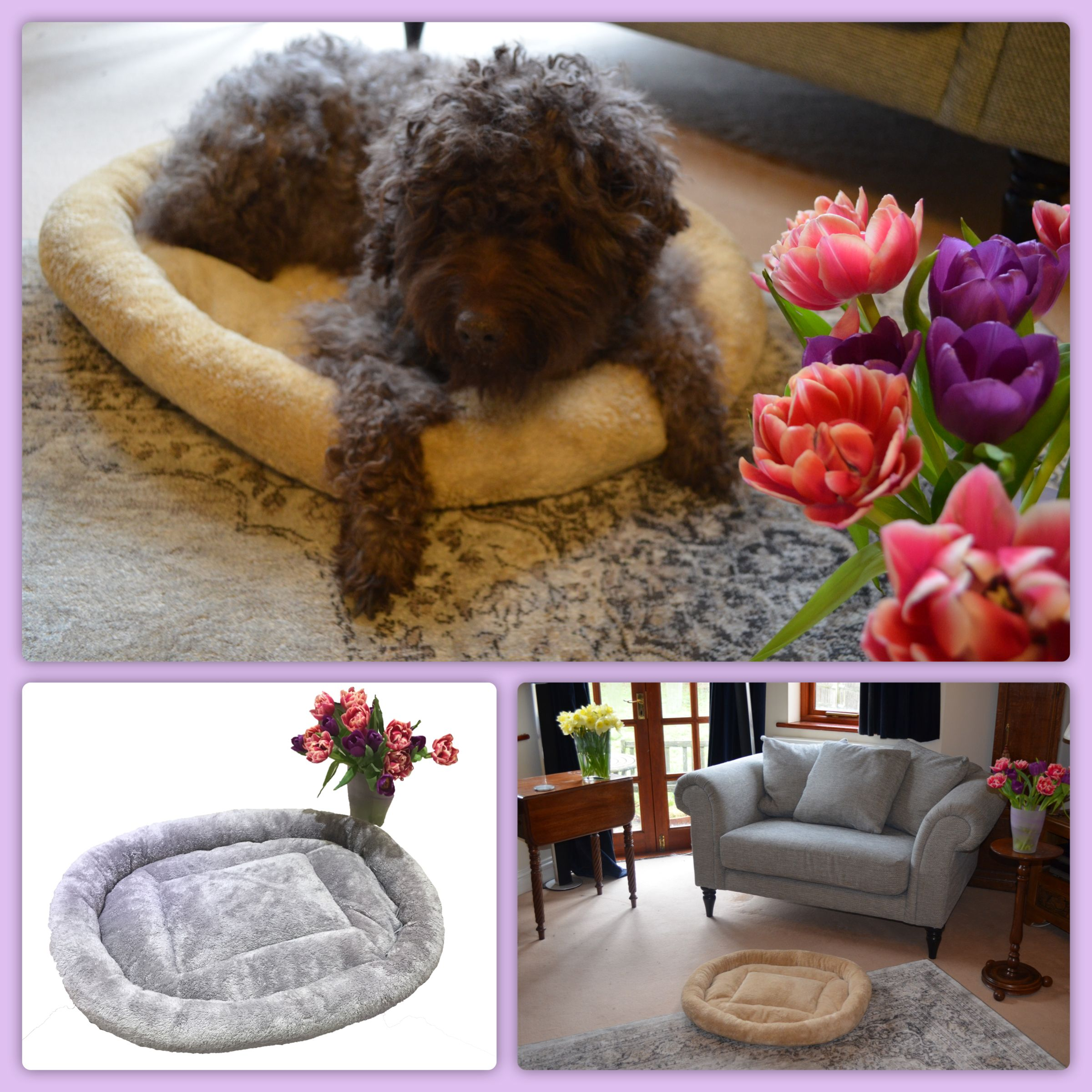 Our Oval Doughnut Dog Bed is stylish in the home, machine