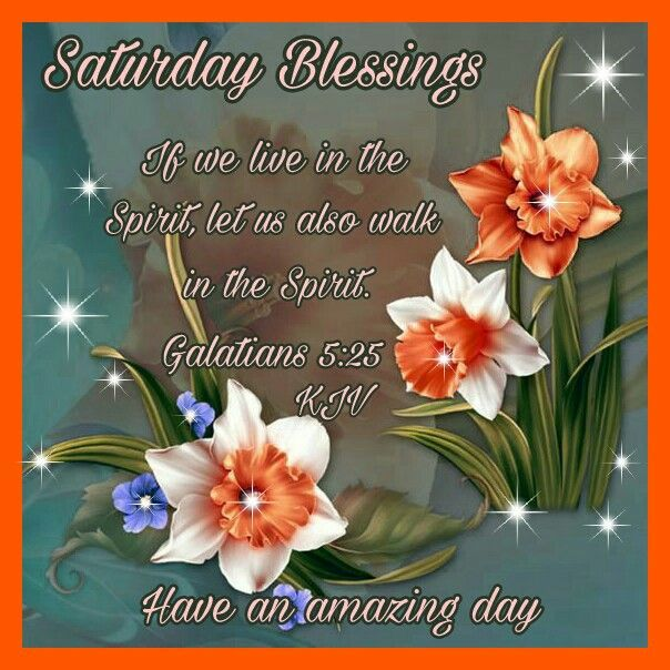 """SATURDAY BLESSINGS: Galatians 5:25 (1611 KJV !!!!) """" If we live in the  Spirit, let us also walk in the Spirit."""" HA…   Walk in the spirit, Morning  blessings, Blessed"""