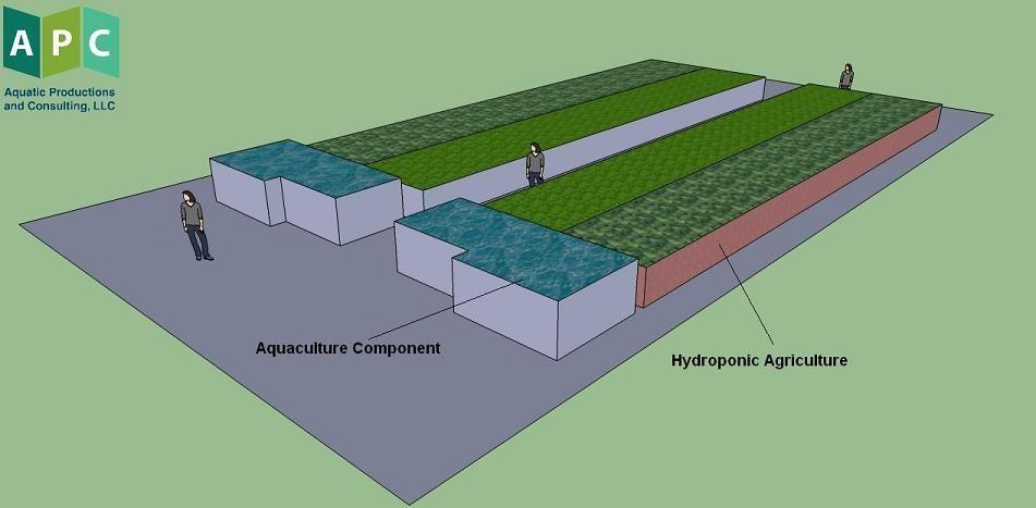 Commercial aquaponics system plans aquaponic diy pinterest commercial aquaponics system plans fbccfo Gallery