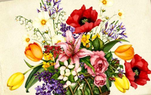 Jacquielawson Birthday Cards Google Search Jackie Lawson