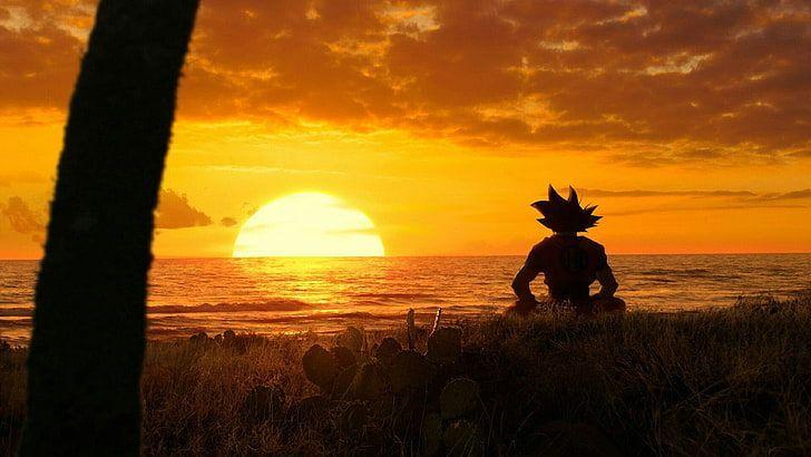 Goku x Harem