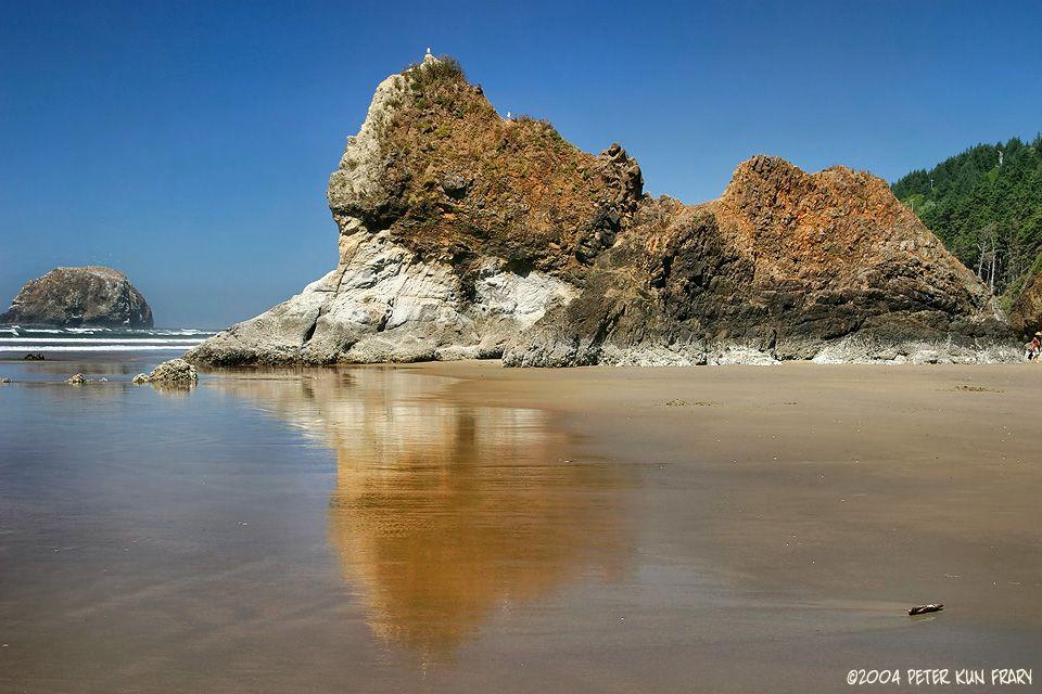 Arcadia Beach Near Cannon Oregon Lone Pine Coast