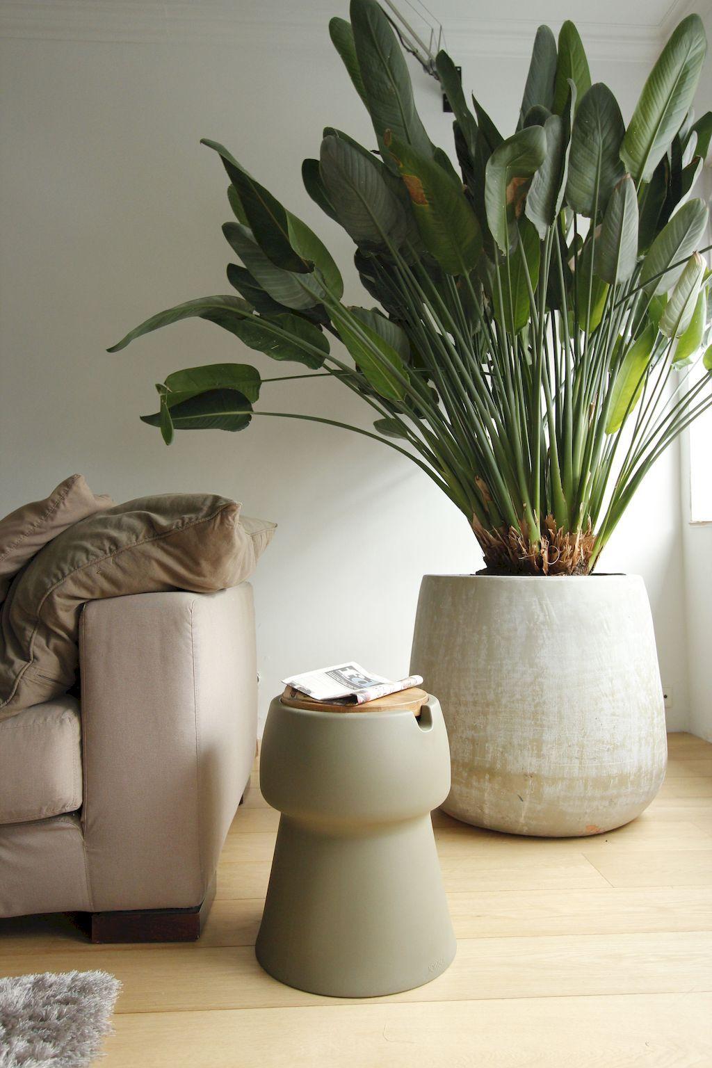 hottest  trends  spring summer livingroom large