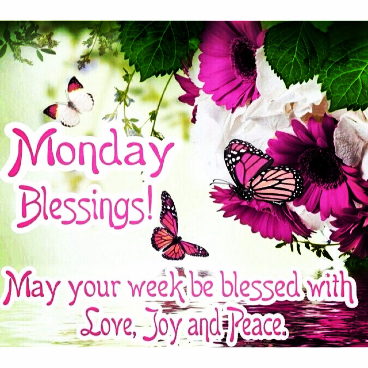 Monday Blessings May Your Week Be Blessed With Love Joy And Peace