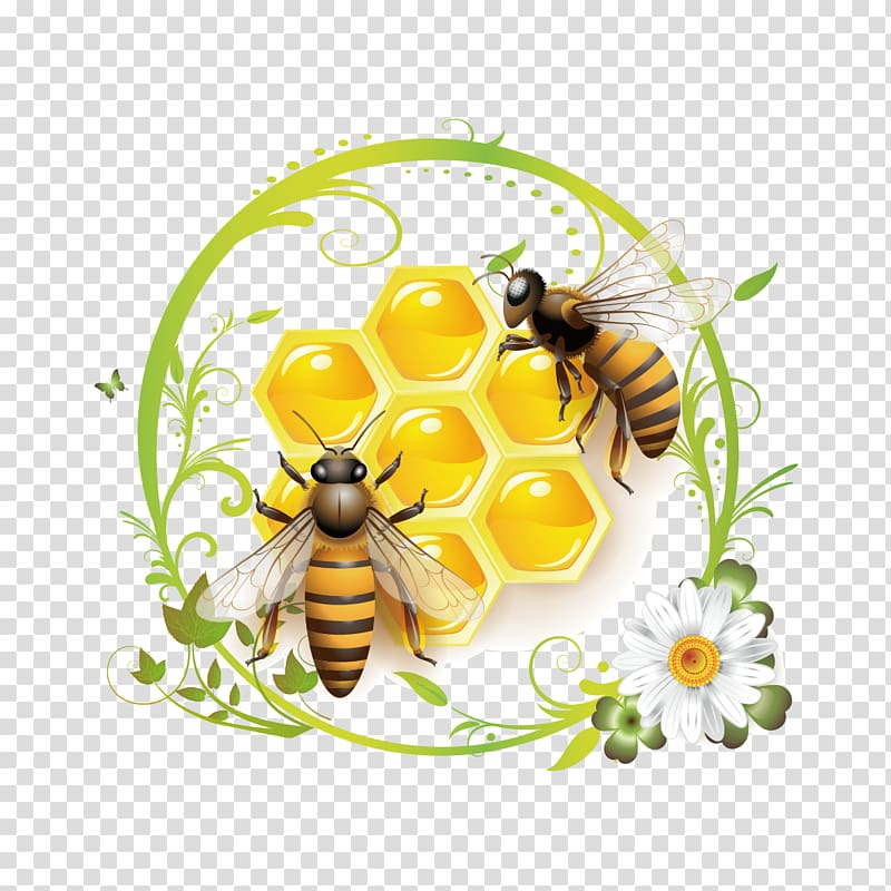 Pin By Mitchel Coombs On Bee Inspired Honey Bee Drawing Bee Drawing Bee Painting