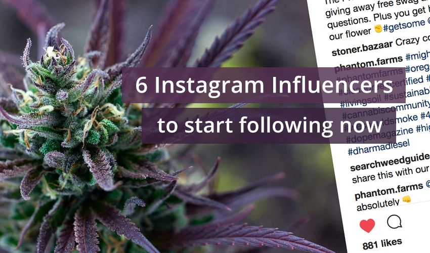 6 Instagram Influencers You Should Be Following Right Now