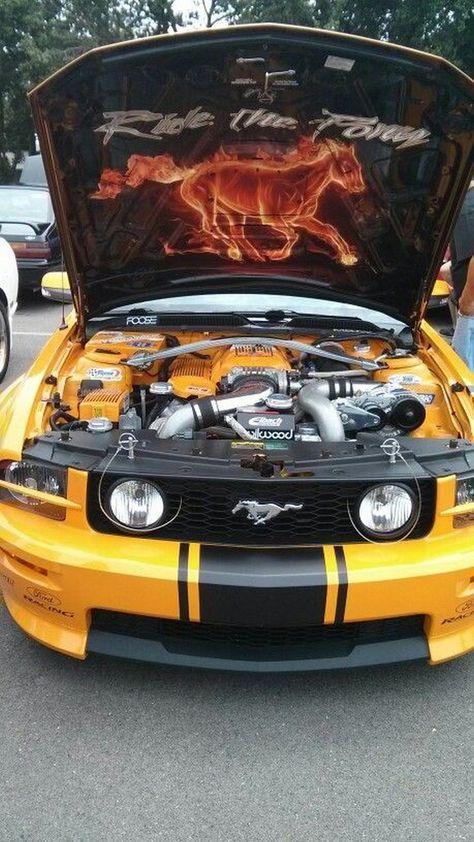 2007 Ford Mustang Hood : mustang, Here's, Pinning, Pinterest, Photos), Suburban, Mustang, Cars,, Mustang,, Custom
