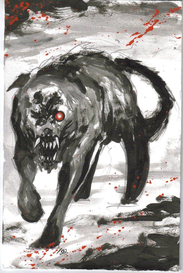 Black Angus Dog Myth
