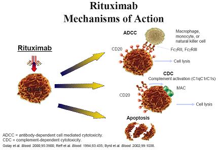 Rituximab חיפוש ב Google Drugs For Sle Kawasaki