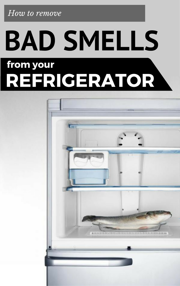 How to quickly eliminate the unpleasant smell in the refrigerator