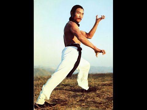Wu Tang Collection: Swift Shaolin Boxer - YouTube | cloudy