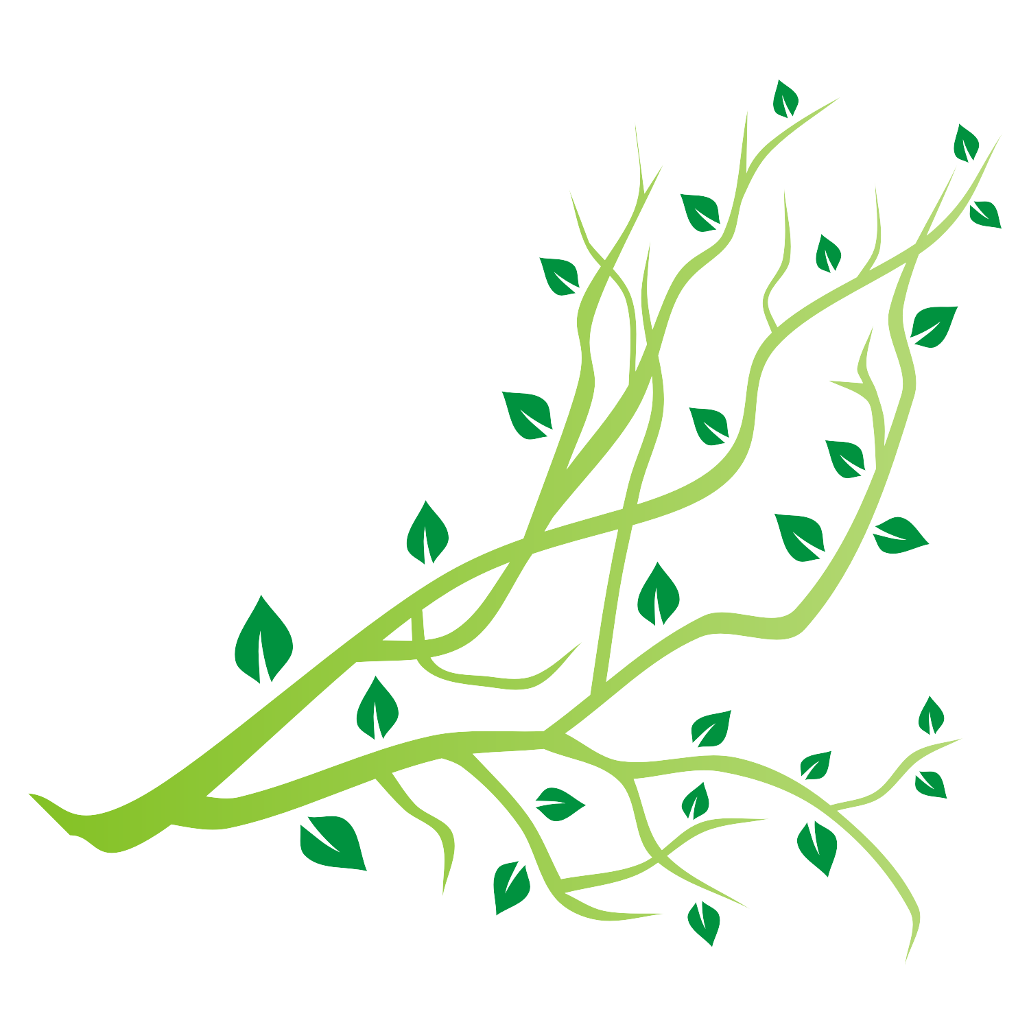 Tree branch vector | Trees | Cartoon trees, Tree branches ...