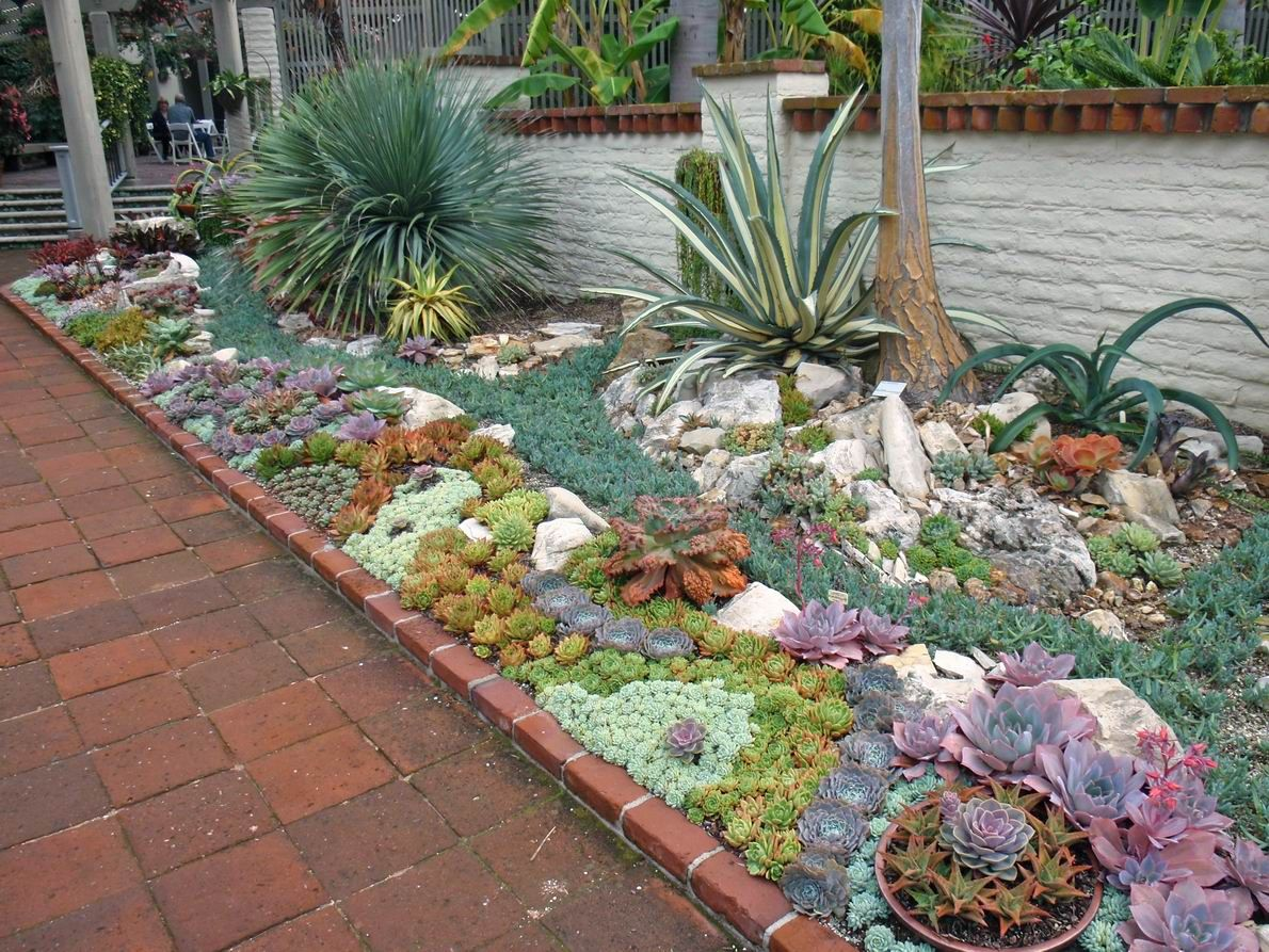 Succulents Garden Ideas summer succulent garden full sun project 26 Best Succulent Garden Ideas Around The World