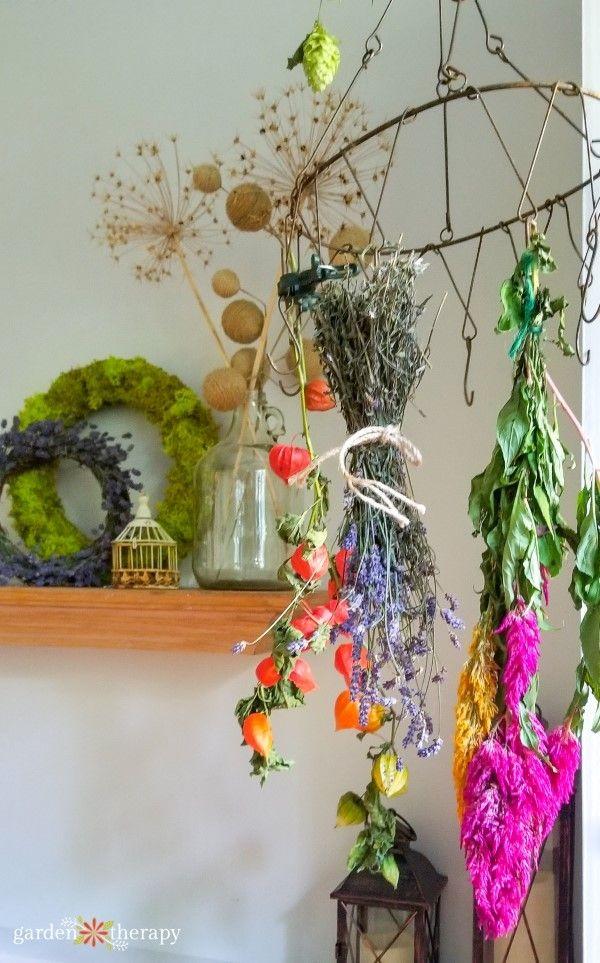 Crea un farmacista per la casa a base di erbe con questa guida alle risorse e ai…