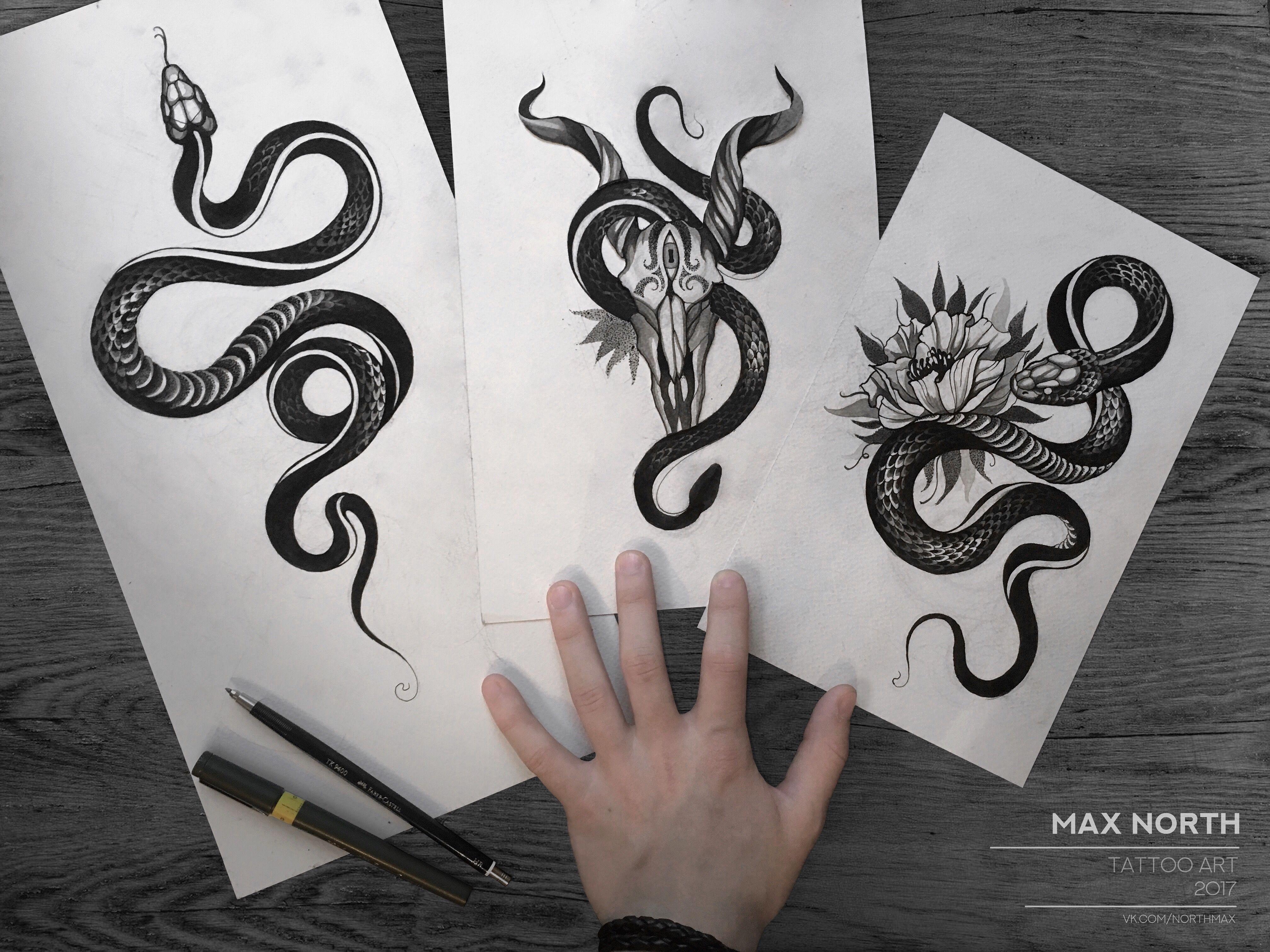 Snake Snaketattoo змея змеи тату эскизтату эскиз Maxnorth