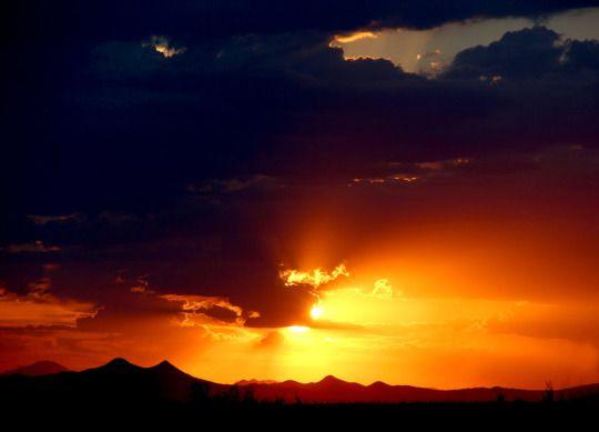 sunset  by Mammoth-Hunter