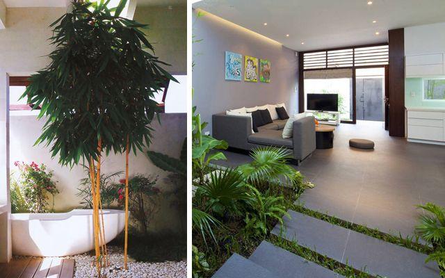 viviendas con jard n interior garden in