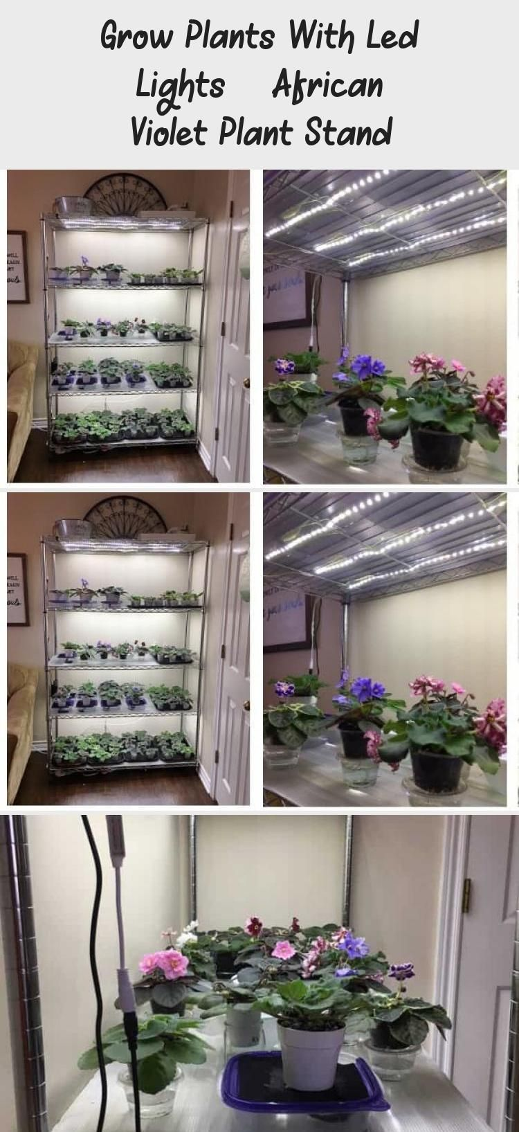 Indoor Diy Plant Stand With Led Lights Grow Your Plants With Led Lights That Diy Grow Indoor Indoorgardensetup Led Lights Plant Plants Stand In 2020