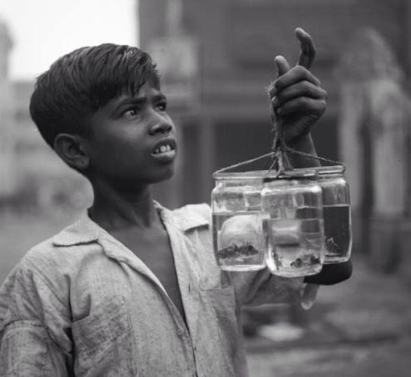 A kolkata you havent seen in your lifetime 100 years of calcutta in 30 stunning black and white images youll love buzznews ibnlive mobile