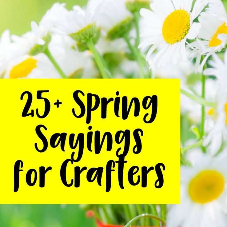 25 Spring Sayings For Crafters Spring Quotes Wooden Signs