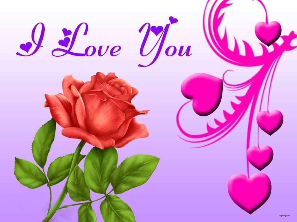i love you beautiful wallpaper for desktop | stuff to buy