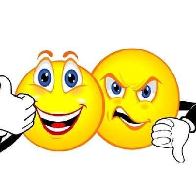 Level 1 Lgs French Opinions Memrise Smiley Clip Art Free Clip Art