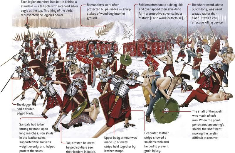 The Rise And Fall Of Rome Roman Rome And History