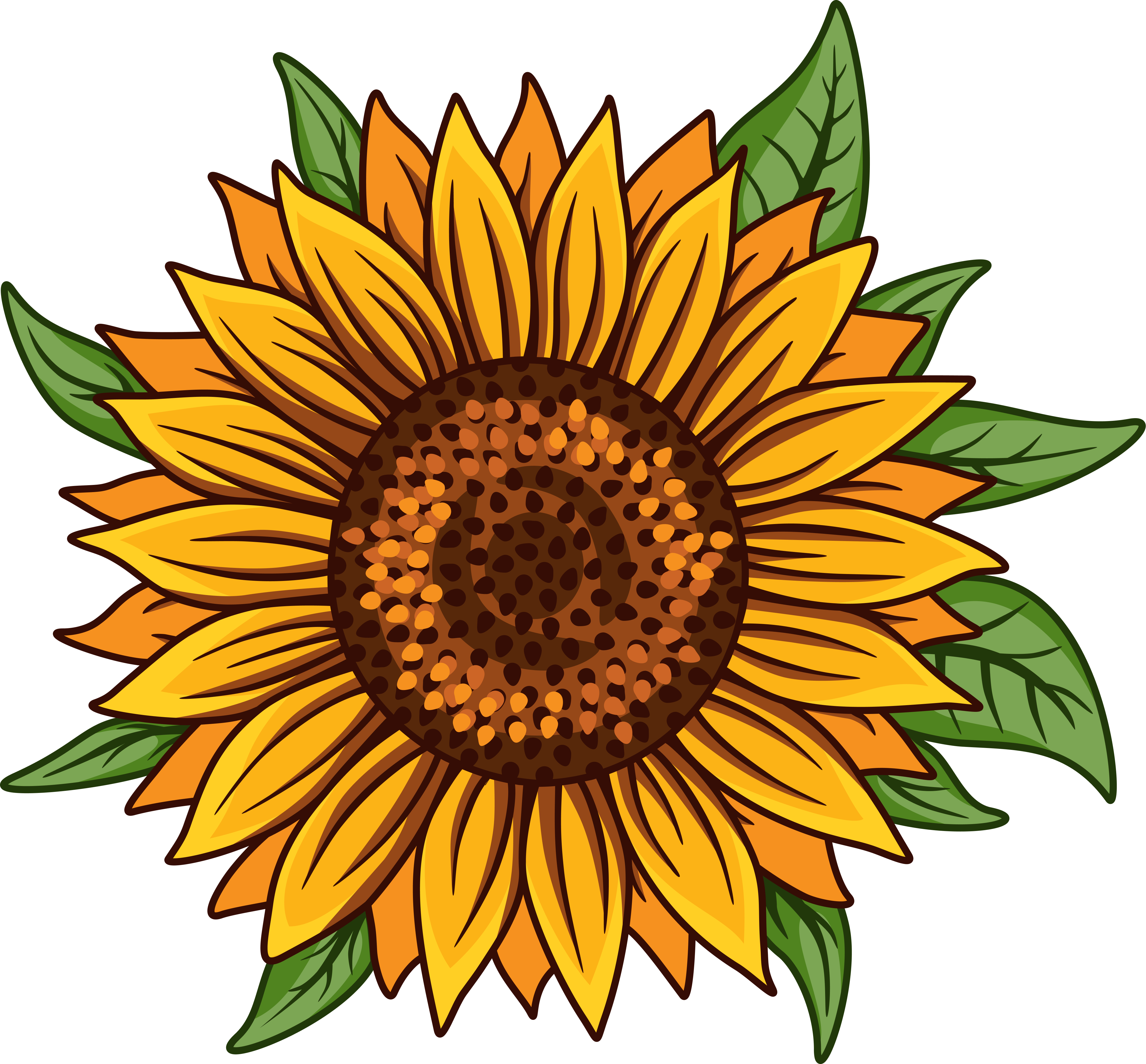 Sunflower Svg Digital Download Sunflower Png White Sunflower Clipart Floral Flower Svg Files For Cricut In 2021 Sunflower Clipart Sunflower Png Sunflower Stencil