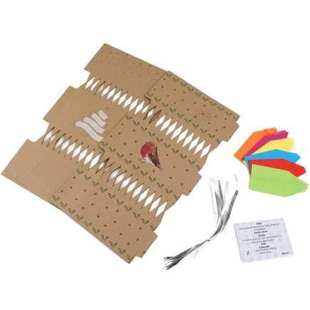 Make your own kraft christmas robin cracker kit 6 pack hobbycraft make your own kraft christmas robin cracker kit 6 pack hobbycraft solutioingenieria Gallery
