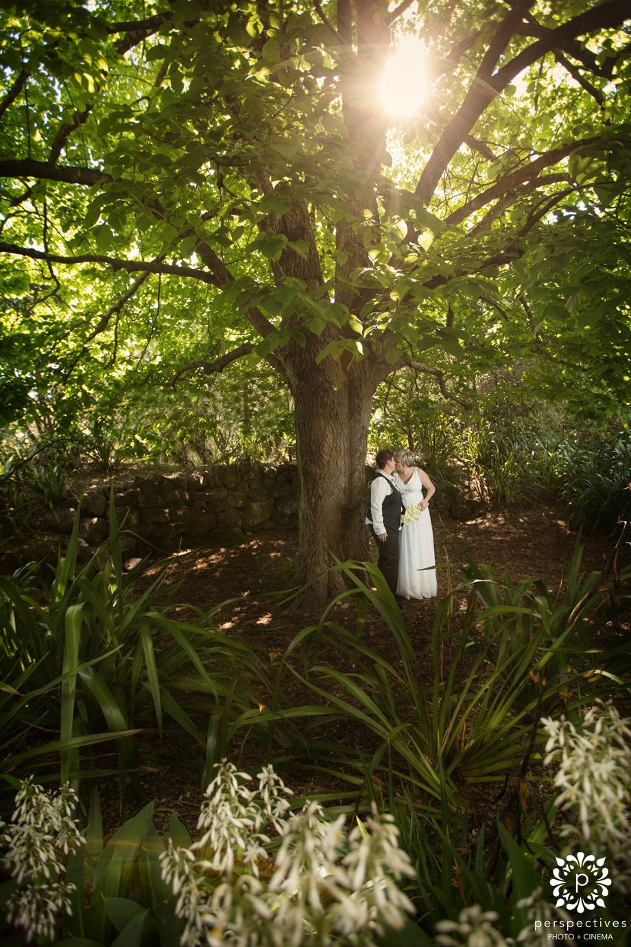 Auckland Zoo Wedding Photos Zoo wedding, Photo