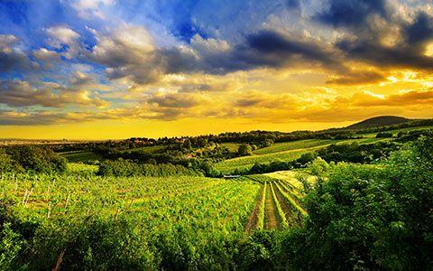 High Resolution Desktop Wallpaper Hills Of Vienna By Mohsen Kamalzadeh Pleasant View Landscape Nature