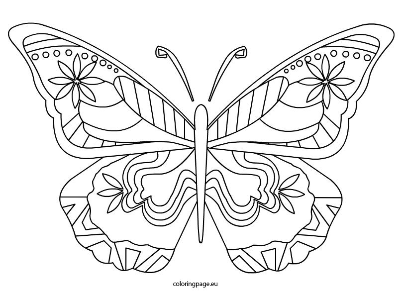 related coloring pagesbutterflybutterfly coloring pagecolorful butterflybutterfly free coloring pageprintable butterfly templatebutterfly cut out