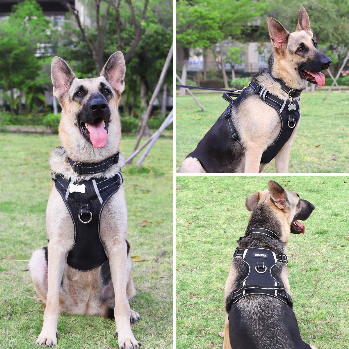 Amazon Com Winsee Dog Harness No Pull Walking Pet Vest Harness