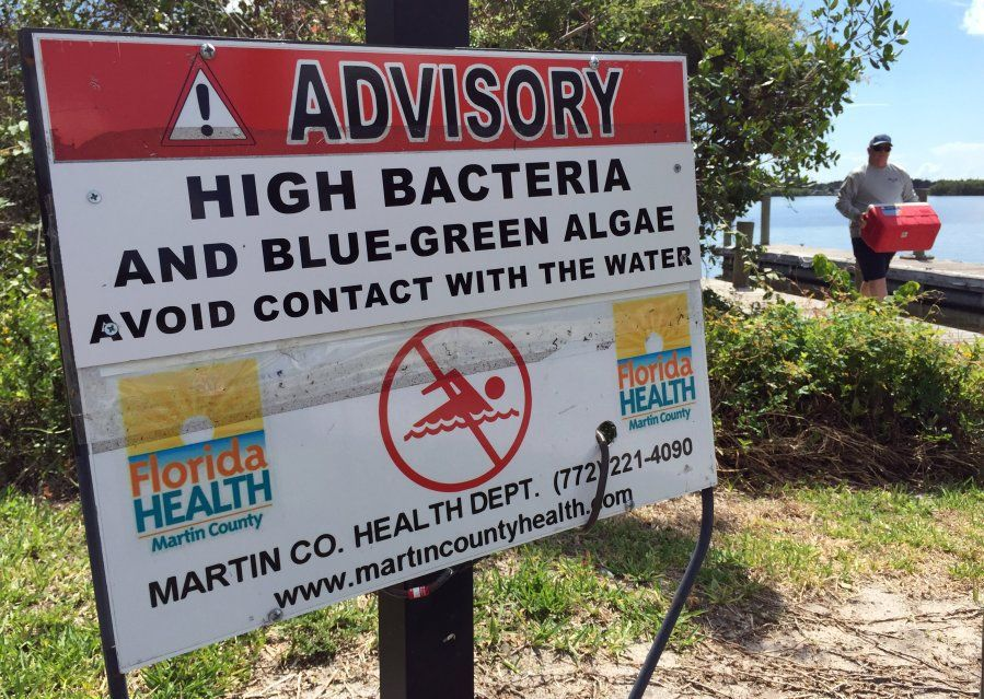 Gayle Harrell Legacy Florida legislation will be 'game