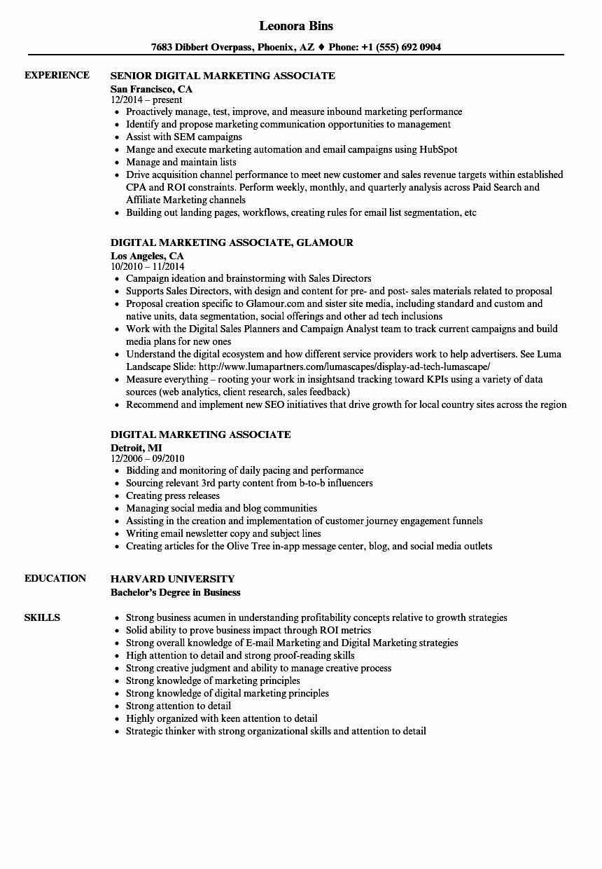 Digital Marketing Manager Resume Unique Digital Marketing