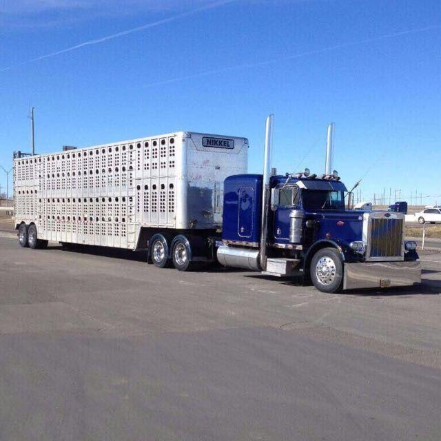 Pin By Jo On My Life Peterbilt Trucks Big Trucks Peterbilt