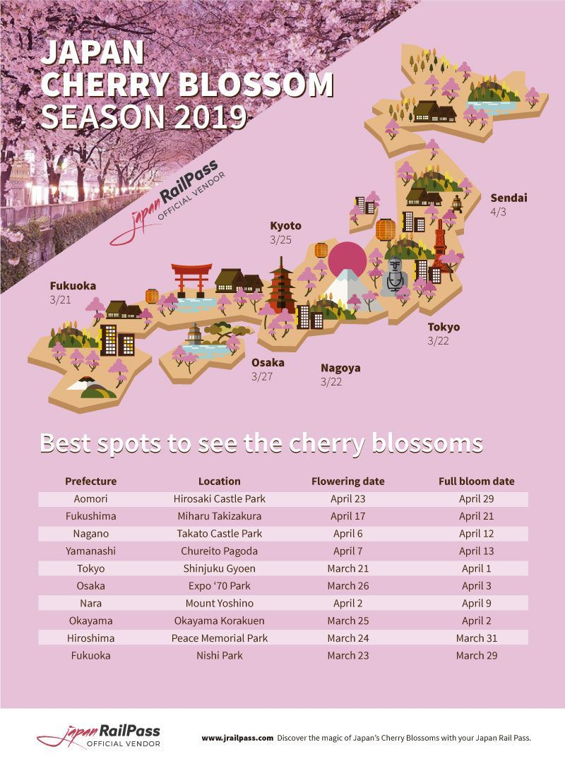 2020 Japan Cherry Blossom Forecast Japan Rail Pass Japan Cherry Blossom Season Cherry Blossom Japan Tokyo Japan Travel