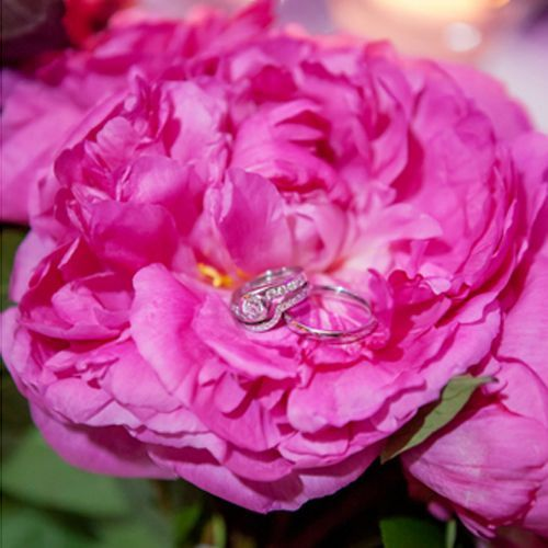 Bouquet + rings Real Weddings - In Bliss Weddings
