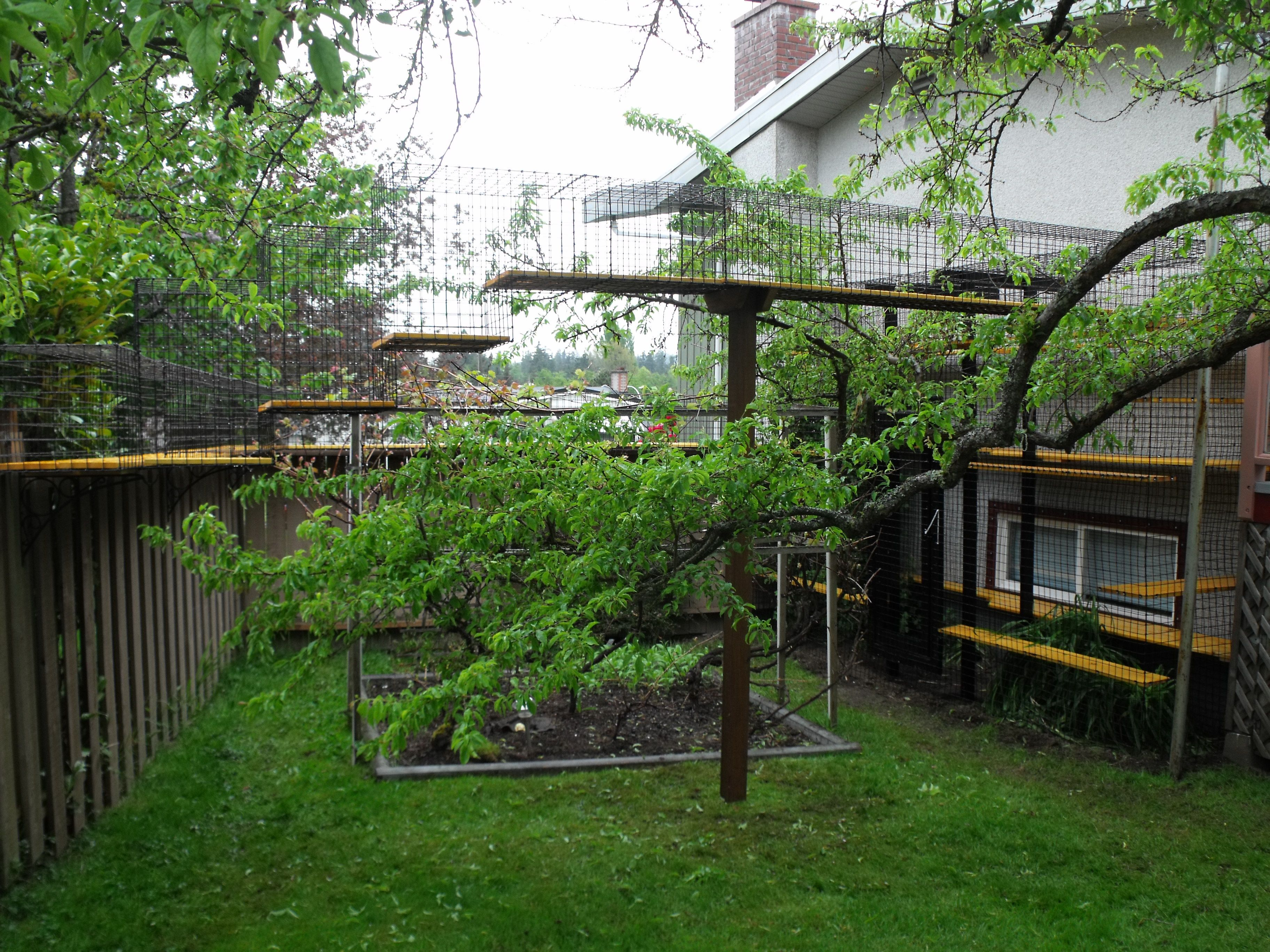 Large outdoor cat enclosure Beautiful World Living Enviro