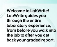 How To Write A Lab Report  Science    Labs Students